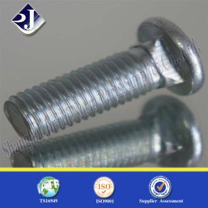 DIN603 Zinc Plated Carriage Screw pictures & photos