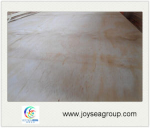9mm 12mm 18mm Radiant Pine Fancy Veneer Hardwood Core Plywood pictures & photos
