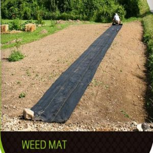 PP Weed Barrier/PP Woven Geotextile/Landscape Fabric for Garden and Lawn pictures & photos