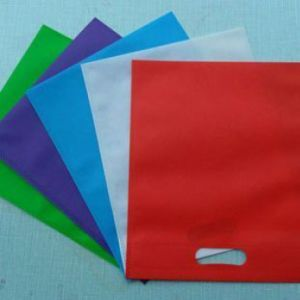 Eco Friendly Non Woven Bag pictures & photos