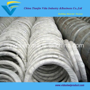 Hot Dipped Galvanized Wire From Biggest Factory pictures & photos