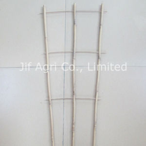 Nature Bamboo Rack for Agriculture Usage pictures & photos