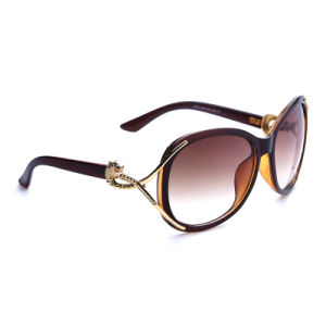 Best Designer Female Acrylic Fashion Sun Eyewear Glasses with Ce Approved (1562)