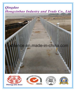 Hot Dipped Galvanized Temporary Fence for Australia China Factory pictures & photos