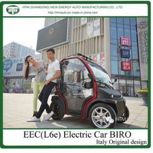 2 Seats Electric Passenger Car