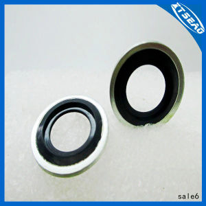 High Quality Self-Centering Bonded Gasket Made in China. pictures & photos