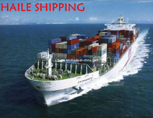 FCL Shipping From Shenzhen to France