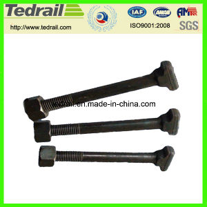 Clamp Bolt and Inserted Bolt T pictures & photos