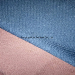 Terry Cloth/ French Terry/Stripe/Knitting Fabric/Bam Boo pictures & photos
