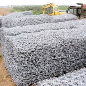 China Wholesale Galvanized Wire Netting with Hexagonal Hole pictures & photos