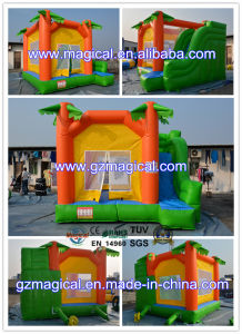 High Quality Inflatable Castle Combo with Slide pictures & photos