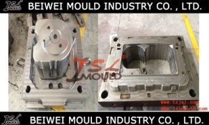 OEM Customized Twin Tub Washing Machine Plastic Injection Mould pictures & photos