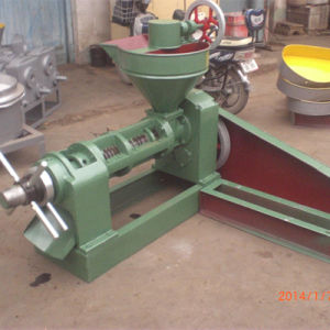 Screw Oil Press (6YL-90) pictures & photos