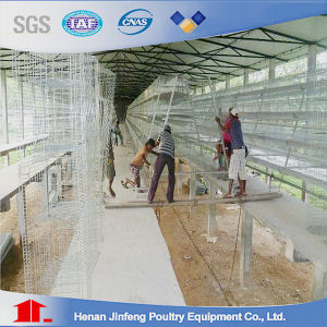 Poultry Equipment Battery Layer Chicken Cage with Wire Netting pictures & photos