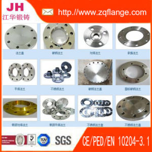 ANSI/JIS/En1092-1/DIN/GOST/BS4504/ Flanges/Gas Flange /Oil Flange/Pipe Fitting pictures & photos
