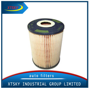 Best Selling Car Fuel System Fuel Filter (30792514) pictures & photos