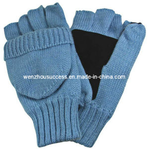 Knitted Gloves Sh12-2g016 pictures & photos