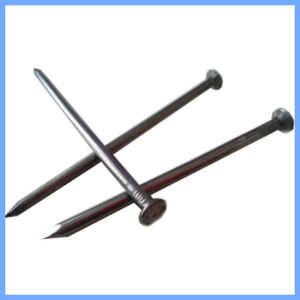 Smooth Shank Common Nail Iron Nail with Factory Price pictures & photos