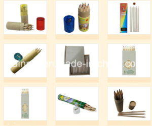 Wooden Pencil in Round Paper Tube Packing pictures & photos