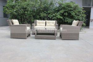 Mtc-270 Hot Sale Outdoor Patio Rattan/Wicker Sofa Garden Furniture Set pictures & photos