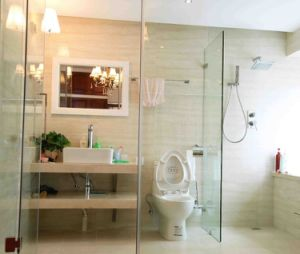 Clear Tempered Glass Door for Washroom pictures & photos