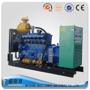 China Brand 80kw/100kVA Natural Gas Generator Set (R5)