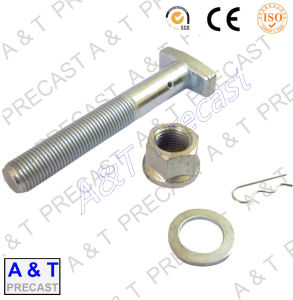 Customized Stainless Steel T Bolt, T Shaped Bolts pictures & photos