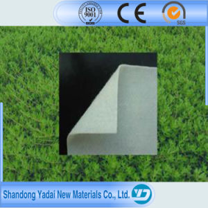 Compound Landfill Geomembrane From China pictures & photos