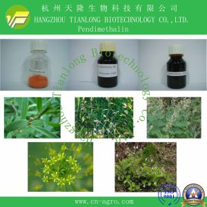 Good Quality Herbicide Pendimethalin (98%TC, 33%EC, 50% EC, 40%SC, 20%SC) pictures & photos