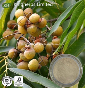 Natural Pure Sapindus Mukorossi Extract 40%, 70% Saponins; Ratio Extract pictures & photos