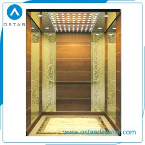 AC380V Mini Villa Elevator Cost with Vvvf Lift Door System pictures & photos