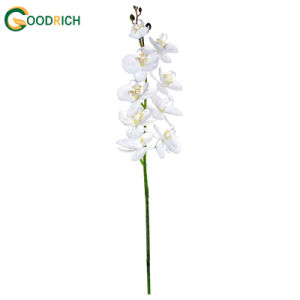 Real Touch Orchid Silk Flower pictures & photos