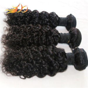 Wholesale 8A Brazilian Virgin Human Hair Jerry Curl Human Hair Weaves pictures & photos