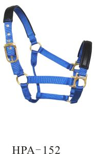 Two Tone PA Webbing Head Collar pictures & photos
