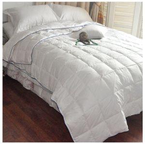 Wholesale Economic 330tc Plain Cotton Bed Linen Hotel Cotton Bedding (JRD033)