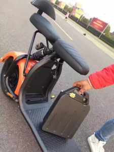 China Factory Electric Motorbike with Remove Battery pictures & photos
