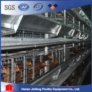 4 Tier Layer Chicken Cage (Poultry Equipment) pictures & photos