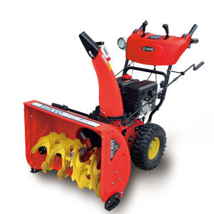 26 Inch Two Stage Gas Snow Blower (TY26DG70)
