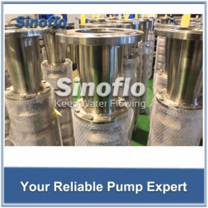 Stainless Steel Submersible Pump for Seawater Rig Cooling System pictures & photos