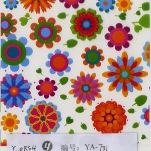 Yingcai 0.5m Popular Cartoon Hydrographic Dipping Water Transfer Printing Film pictures & photos