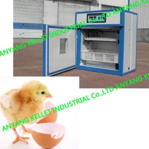 Automatic Poultry Chicken Bird Goose Duck Egg Incubator Hatcher Equipment
