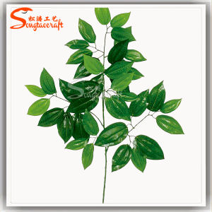 High Quality Evergreen Plastic Artificial Leaves for Decoration pictures & photos