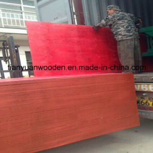 13-Ply Construction Red Pine Shutter Plywood pictures & photos
