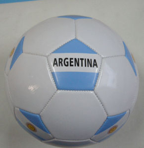 Argentina Country Flag Soccerball Football pictures & photos