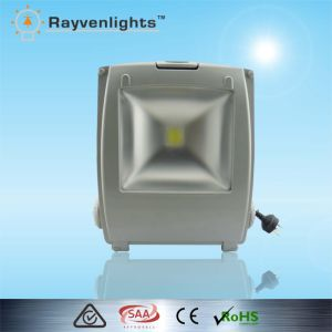 IP 65 Mean Well Bridgelux COB Chip LED Flloodlight for Outdoor Light with Beam Angle 120 Degree