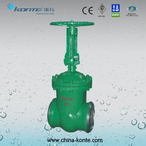Vacuum Gate Valve Pn25 Dn300 pictures & photos