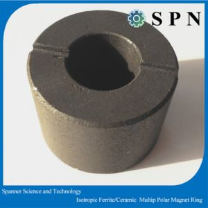 Ferrite Isotropic Multipole Magnet Rings for Stepping Motor pictures & photos