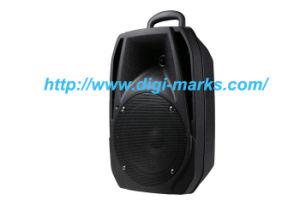Hi-Fi Portable Outdoor Active DVD Screen Trolley Speaker pictures & photos