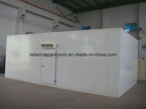 Cold Room for Vegetables, Meat and Fish pictures & photos