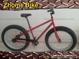 Bicycle Parts/Steel Fat Tire Bike Snow Bike Frame and Fork pictures & photos